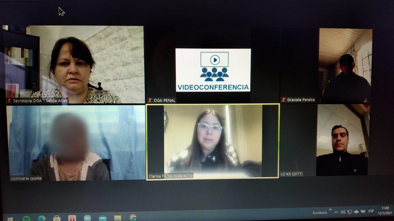 Oralidad Penal - Videoconferencia